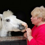 """Horsin' around: new words to use when you write about the """"neddies"""""""