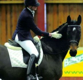 Why Facebook blogging works for small business - equestrian training