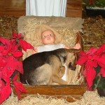 The Nativity with a modern twist…