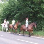 Writing about horses: a poem for car and truck-lorry drivers
