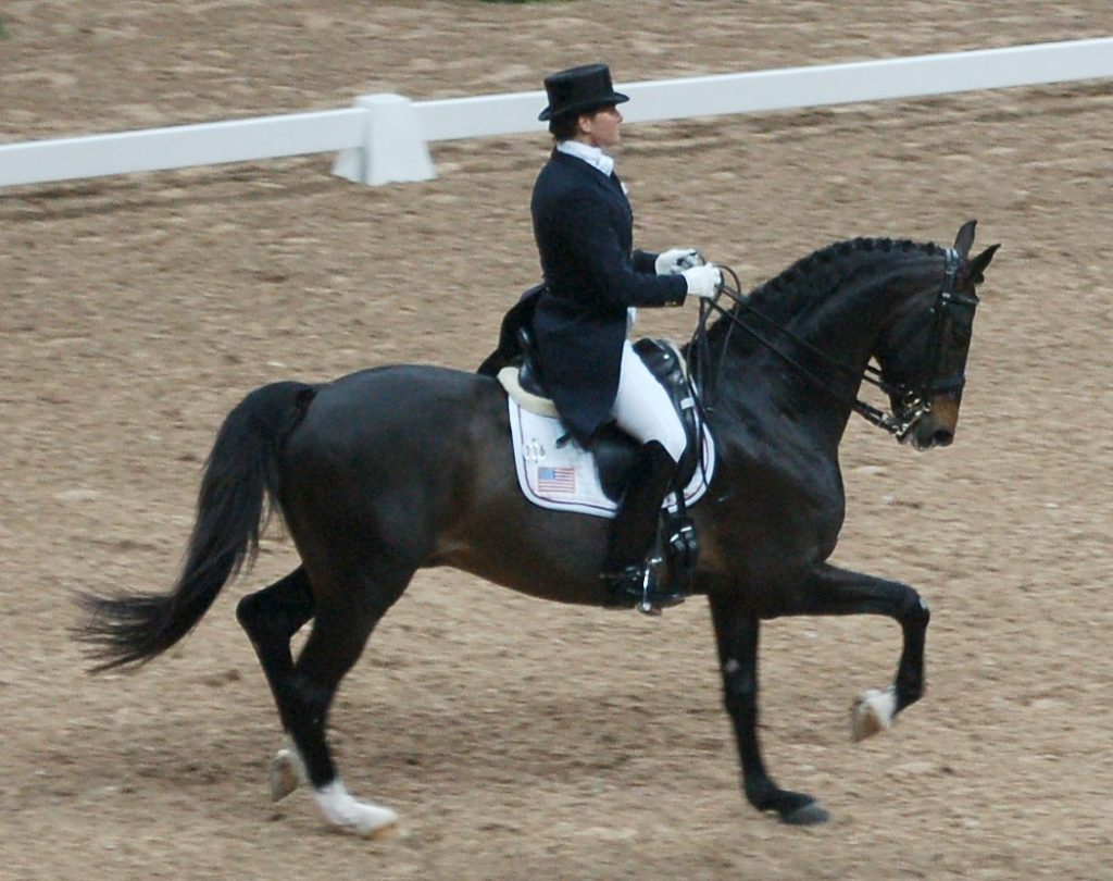 Writing for a dressage judge